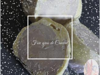 foie-gras-canard-mi cuit-Thermomix-tef original
