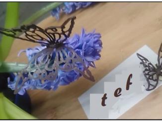 papillons en dentelle au chocolat au thermomix